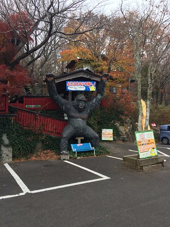 Shiroishi, Giappone: При входе и не скажешь что это лисий парк
