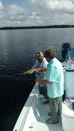 Ruskin, FL: Caught over 80 fish that day, who knows lost count after 30
