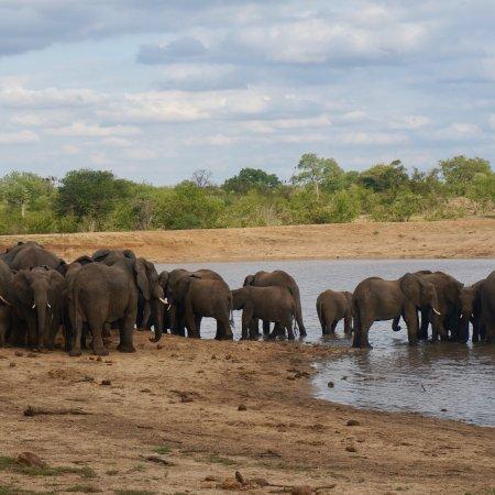 Палаборва, Южная Африка: photo1.jpg