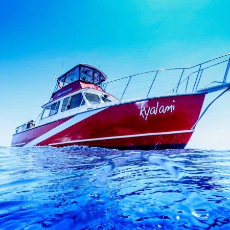 Jupiter, FL: Beautiful boat