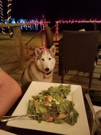 Caribbean Villas Hotel: Extra guests at dinner