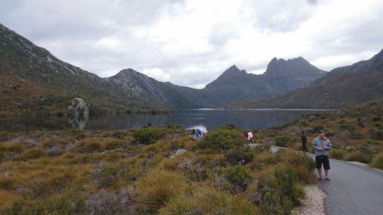 Cradle Mountain-Lake St. Clair National Park, Australia: DSC_5791_large.jpg