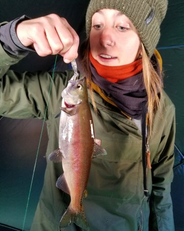 Dillon, CO: Customer catching kokanee salmon on the ice