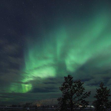 Alta, Norveç: November 2017