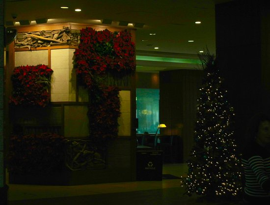 the westin san diego christmas decorations in the lobby - Christmas Decorations San Diego