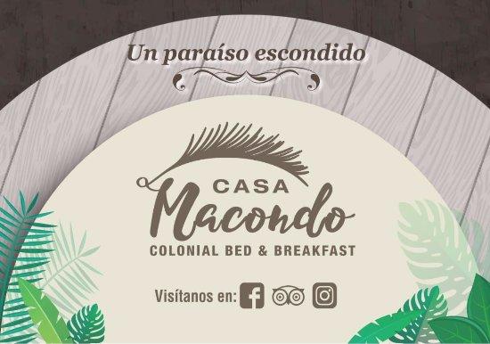 Hostal Macondo: MACONDO a hidden paradise...