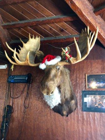 Mount Baldy, Kalifornien: Christmas moose