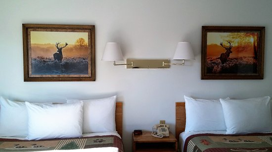Eagle's Nest Motel : Double queen room