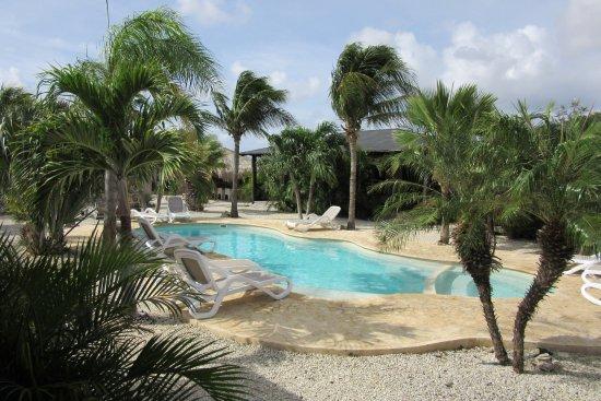 Bridanda apartments bonaire kralendijk opiniones y for Apartahoteles familiares playa