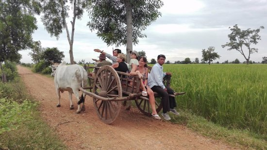‪‪Battambang‬, كامبوديا: A scenic trip through the Phnom Sampov Countryside visiting rice fields and organic farm!‬