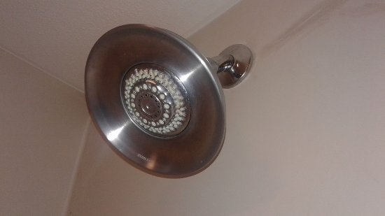 Flowood, MS: The showerhead looked worse in person