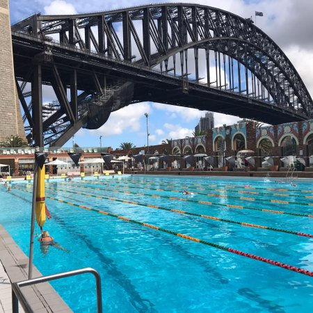 Olympic Pool North Sydney 2018 All You Need To Know