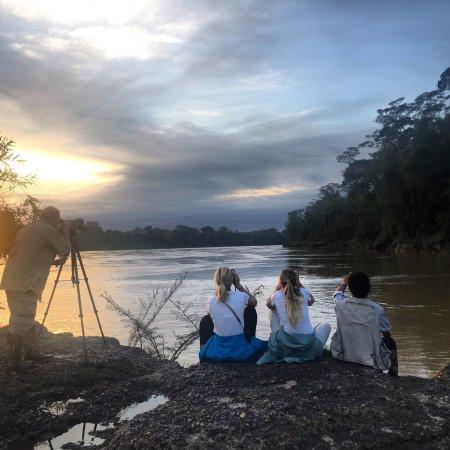 Puerto Maldonado, Peru: Collpa de loros La Cachuela