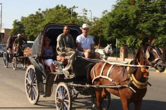 Aswan Horse and Carriage Ride