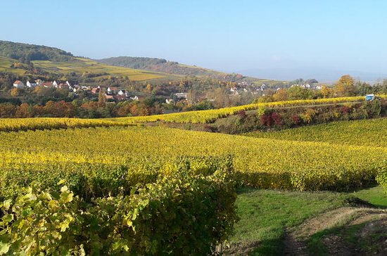 Private Custom Tour of Alsace Region...