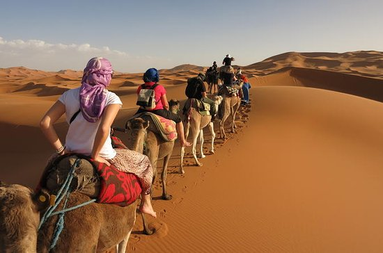 3 Days Tunisian Sahara Camel Trek
