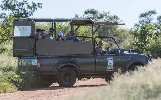 Hazyview, Sudáfrica: The two vehicles spotting some elephant crossing.