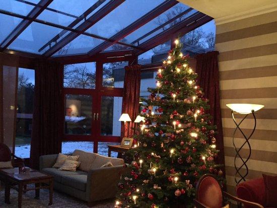Stromberg, Alemania: Wintergarten mit Weihnachtsbaum