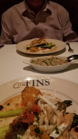 GW Fins: John Dory fish, with a side of mushroom risotto, fantastic, best fish I've ever had