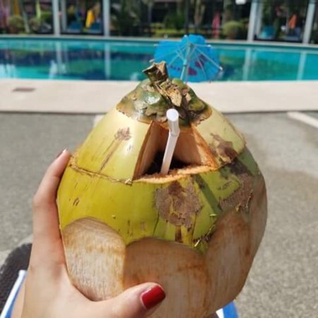 Waterfront Insular Hotel Davao: Freshly harvested buko/coconut right on site!
