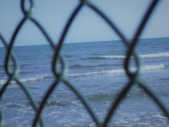 Mckenzie Beach Larnaca - Picture of Mackenzie Beach, Larnaca