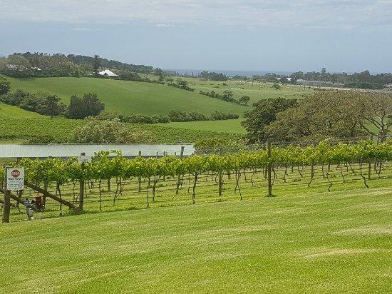 Gerringong, أستراليا: 20171208_124126_large.jpg