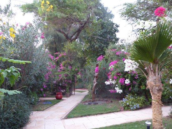Lookea Royal Baobab: Les jardins pour se rendre aux cases