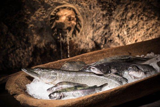 Bad Vigaun, Austria: Frischer Fisch