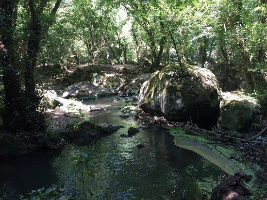 Mazzano Romano, Italien: Natura favolosa!