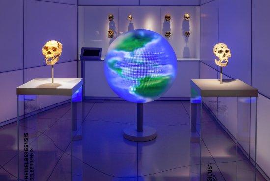 Staatliches Museum für Archäologie Chemnitz
