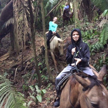 Banana Bank Lodge & Jungle Horseback Adventure: photo0.jpg