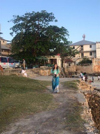 Zanzibar City, تنزانيا: Stone Town