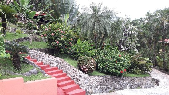 Hotel El Jardin: IMG-20171126-WA0010_large.jpg