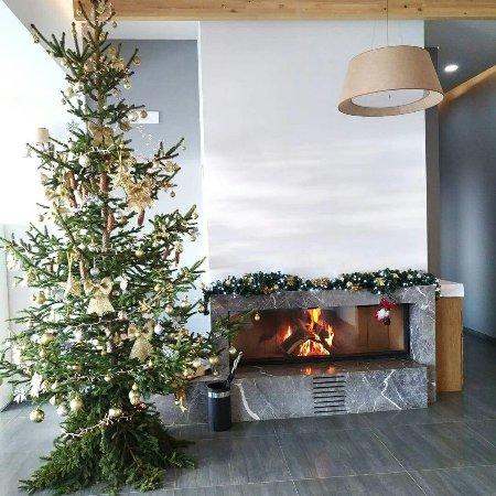 #christmastree#luginaedrinit#kukes