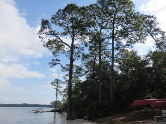 Niceville, FL: View of Rocky Bayou from our picnic spot.