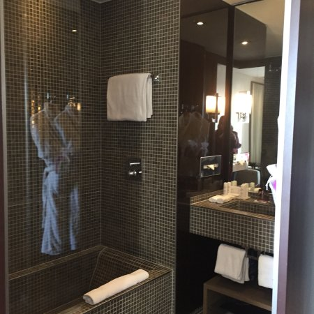 Radisson Blu 1835 Hotel & Thalasso: photo2.jpg