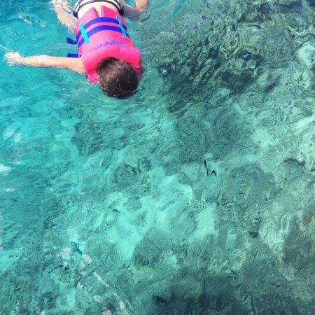 Manava Beach Resort & Spa - Moorea : photo2.jpg