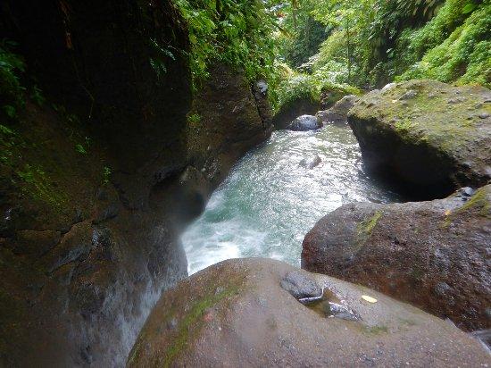 Le Marin, Martinik: DSCN7809_large.jpg