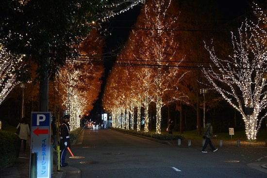 Nagura Park