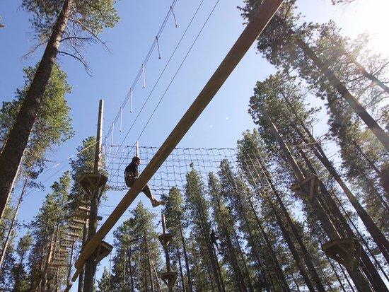 Maple Creek, Kanada: The High Ropes Course at Treeosix!