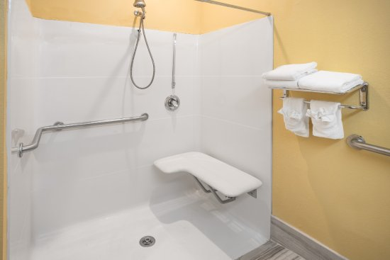 Stockbridge, GA: Handicap Accessible Bathroom with roll in shower