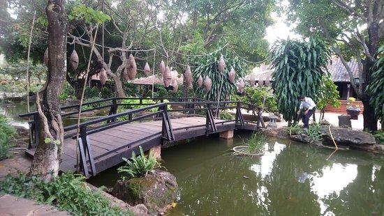 Trung Nguyen Village Coffee: Décors aquatiques