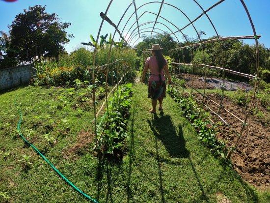 San Sai, Tailândia: Walking through the garden with May