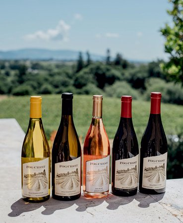 Sebastopol, Californien: Sonoma Chardonnay, Rosé and PInot Noir at Fog Crest Vineyard