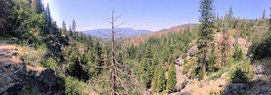 Wawona, Kalifornien: Hiking the Alder Creek Trail