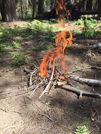 Wawona, CA: Backcountry camping fires allowed on the Alder Creek Trail