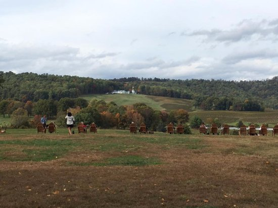 ‪‪Charlottesville‬, فيرجينيا: View looking out from winery‬