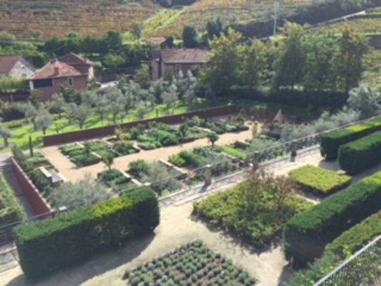 Samodaes, Portugal: Orchard and Organic Garden