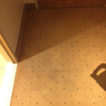 Vienna House Dream Castle Paris: Nous avons passé 3 nuits/4 jours dans cet hôtel avec de nombreux et gros problèmes d'hygiène. Il