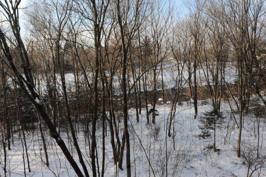 Wendake, Canadá: Vue de la chambre sur la rivière
